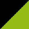 črna- fluorescentno zelena- bela / black-green fluo-white (1954)