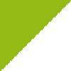 fluorescentno zelena-bela / green fluo-white (05790)
