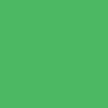 fluorescentno zelena / green fluo (03320)