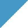 nebeško modra-bela / sky blue-white (01100)